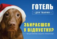 """Зимові канікули у ВЦ """"Алден-Вет"""""""