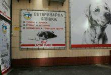"""Открытие клиники """"Алден-вет"""" по ул. Н. Закревского, 87 после ремонта!"""