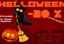 Отмечаем Halloween вместе с «Алден-Вет»