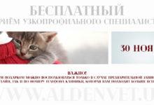 """""""Всемирный день домашних животных"""" («World Day Pets»)."""