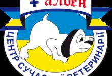 """Врач ВЦ """"Алден-Вет"""" принял участие в конференции WSAVA"""